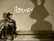 harveyview.jpg